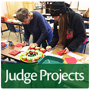 Spend a day or a few hours evaluating 4-H presentations and competitions.