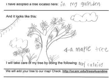 tree postcard example March 2015